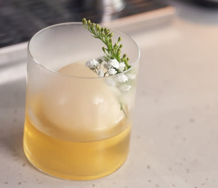 honteri milk punch